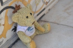 Geoffrey, Phlip's traveling companion, takes a rest.